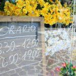 mozzo curno bergamo negozio vendita fiori occasione fronte strada vetrine centrale passaggio visibilità